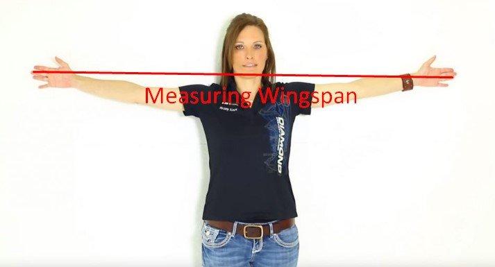 Measure Draw Length – Measuring Wingspan