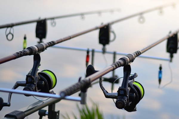Best Swimbait Reels