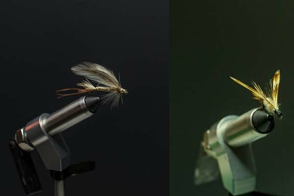 Dry Fly vs Wet Fly - Compared Exquisitely