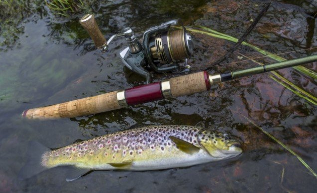 Best Trout Spinning Reel
