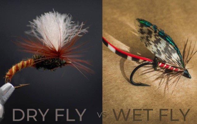 Dry Fly Vs Wet Fly