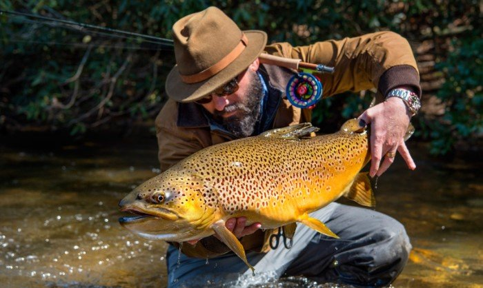 Best Time For Trout Fishing