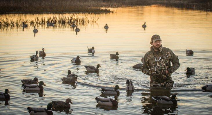 duck hunting Hunting times
